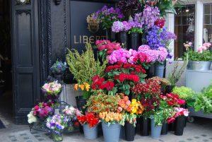 flower-shop-1