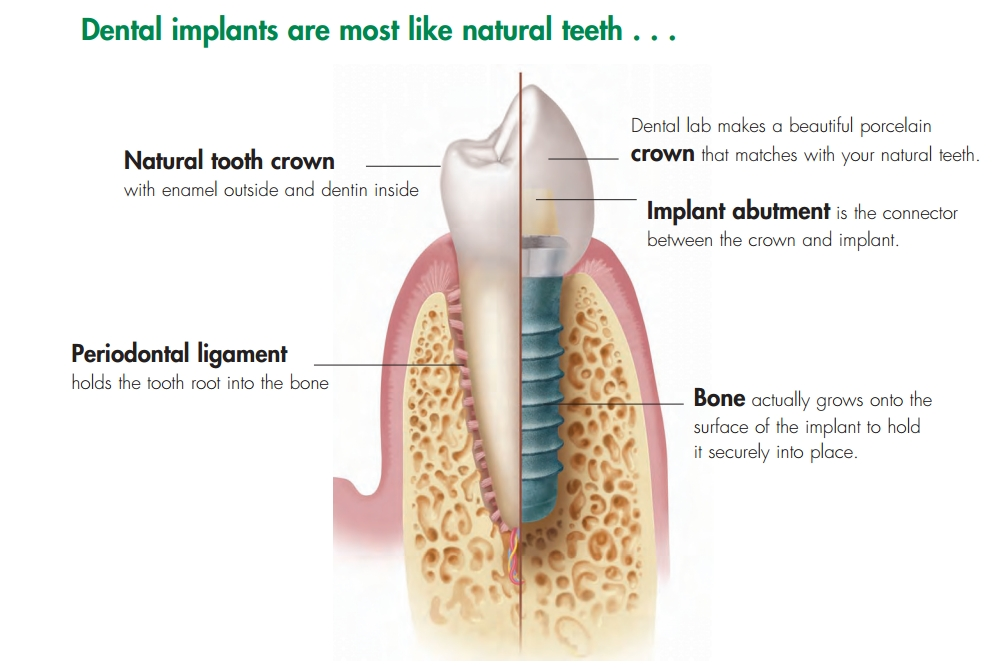 dentist-woodville